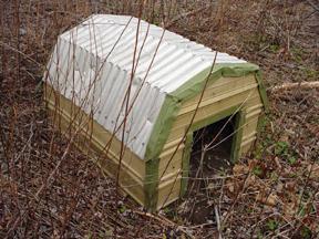 a Pennsylvania doghose 01/02/05, art from John Yotko