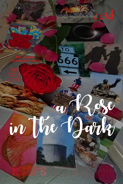 """2b8b8bce472977 Because the gift theme for 26-year anniversaries is """"pictures"""", the cover  art is a rose on top of a series of pictures, laying on top of a shattered  mirror."""